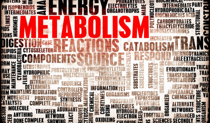 10 effective ways to increase your metabolism